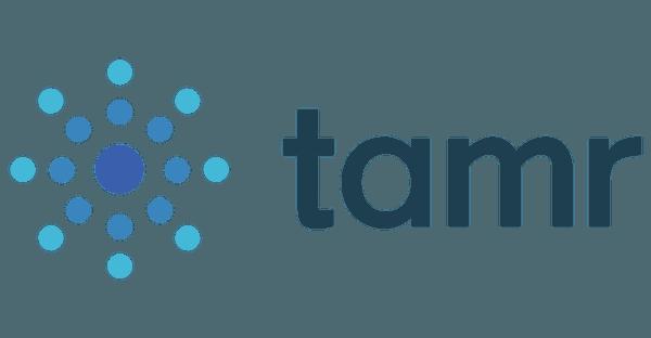 [AI and ML Seminar] Tamr: エンタープライズデータの知られたくない秘密/ The Dirty Little Secret of Enterprise Data
